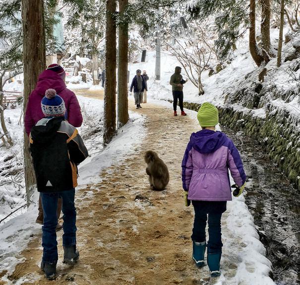 Jigokudani Monkey Park Nagano Japan with kids