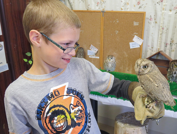 Owl Cafe Tokyo Japan with kids
