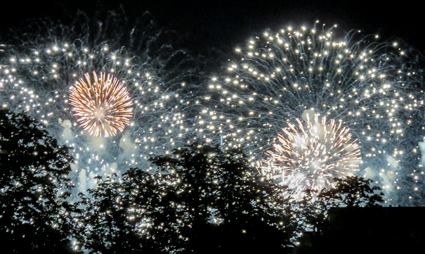 Bastille Day fireworkds - things to do in Paris with kids
