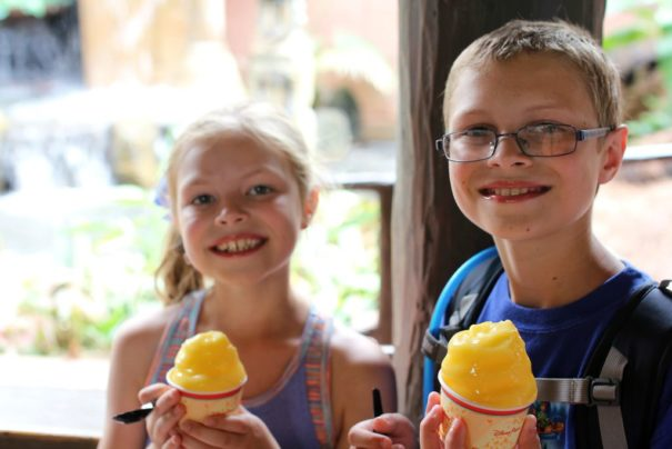 Don't skip the Dole Whip! Definitely the best of Walt Disney World Resort.