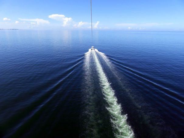 Breathtaking parasail ride above the Gulf of Mexico