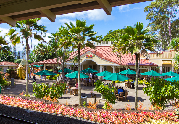 Dole Plantation Oahu Hawaii - things to do in Hawaii with kids