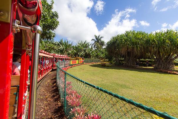 Things to do in Hawaii with kids - Dole Plantation Oahu Hawaii train ride