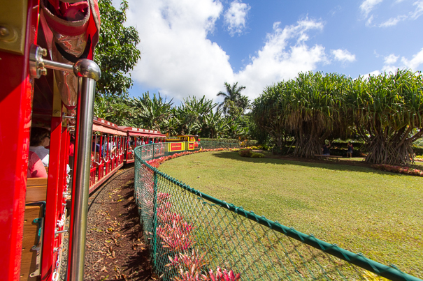 Things to do in Hawaii with kids - Dole Plantation Oahu Hawaii train ride