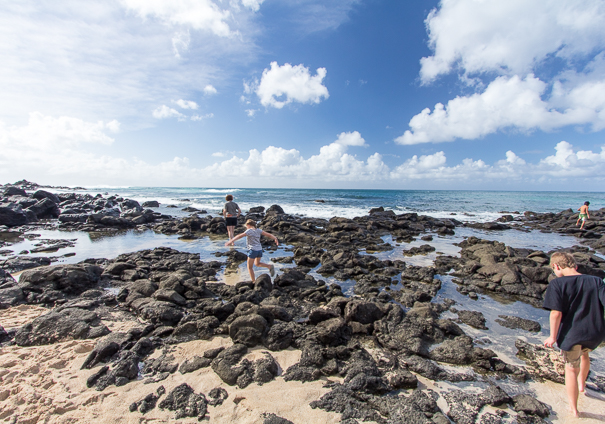 Things to do with kids in Hawaii - North Shore Oahu Hawaii