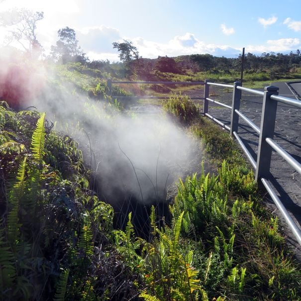Steam vents at Volcanoes NP