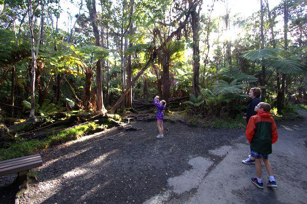 Taking photos at Volcanoes NP