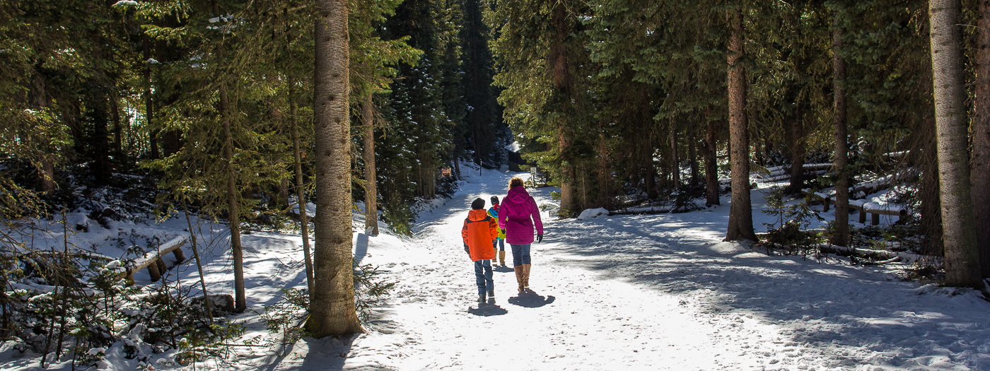 A Winter Adventure in Rocky Mountain National Park