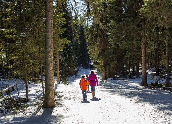 Hiking in Rocky Mountain National Park with kids