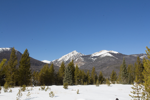 Incredible views in Rocky Mountain National Park