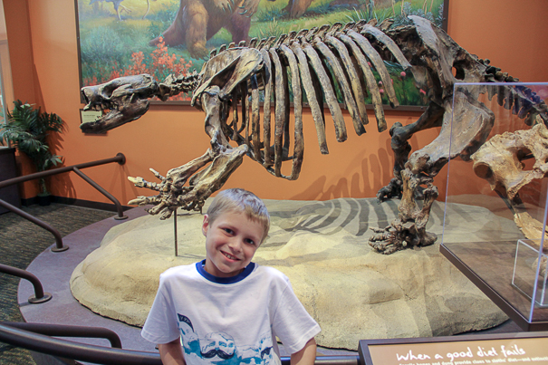 San Diego Natural History Museum - Family things to do in San Diego
