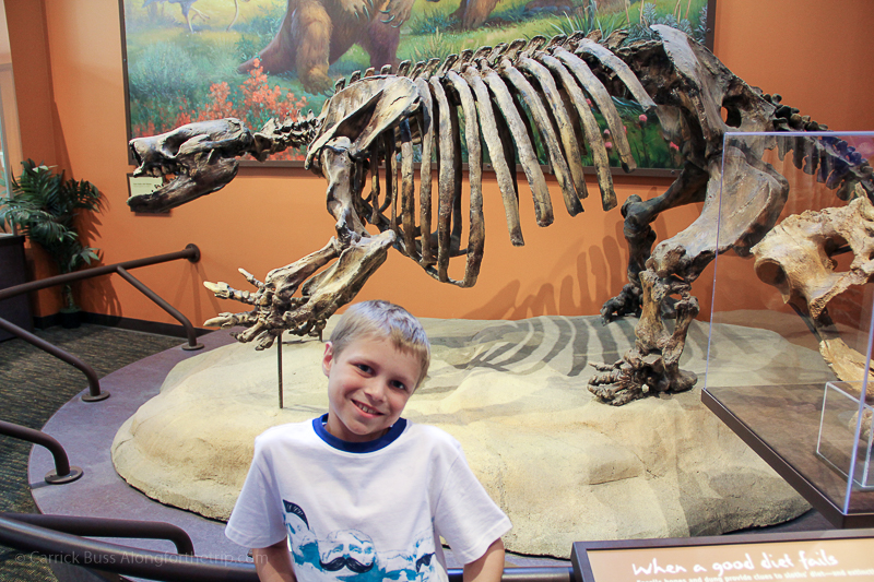 San Diego Natural History Museum - activities for kids in San Diego