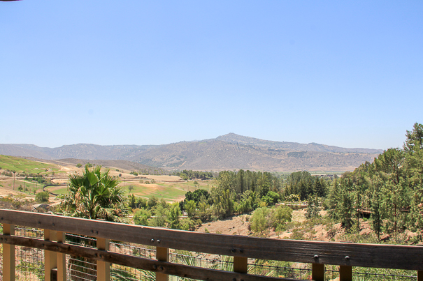Looking out across San Diego Safari Park - best things to do in San Diego with kids