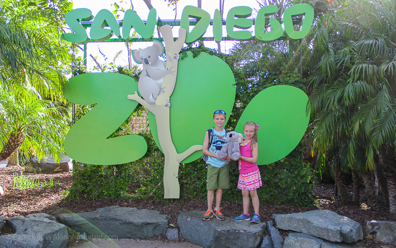 Unique things to do in San Diego - visit the San Diego Zoo