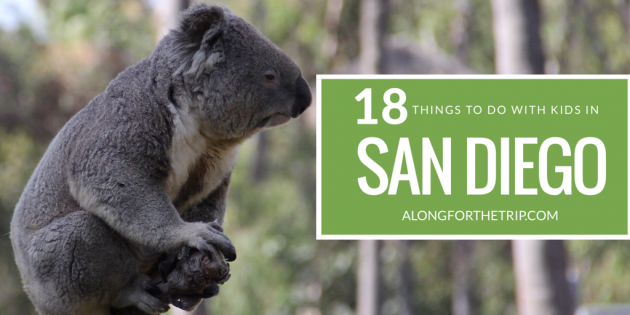 Fun things to do in San Diego with kids