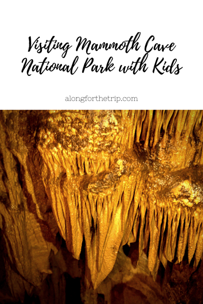 Visiting Mammoth Cave National Park with kids is great because it's cheap and the kids will love it. See what all there is to do!