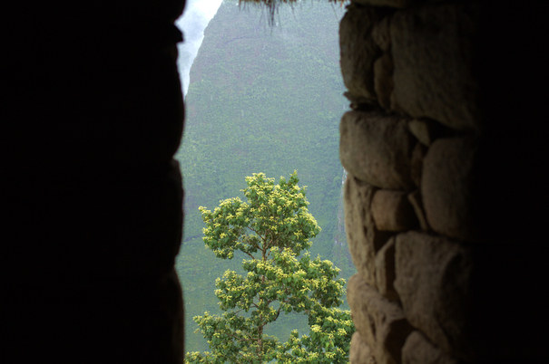 A view from the ruins of Machu Picchu