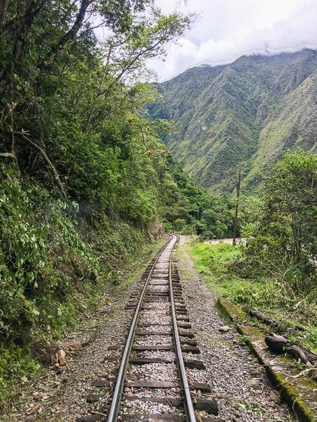 Peru Rail - Machu Picchu with kids