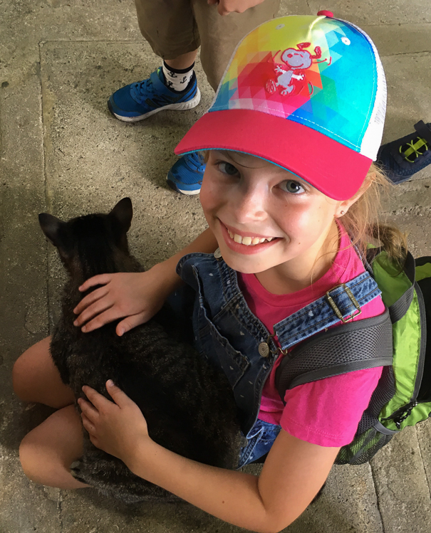Getting to know the residents at the Hemingway Home and Museum Key West with kids