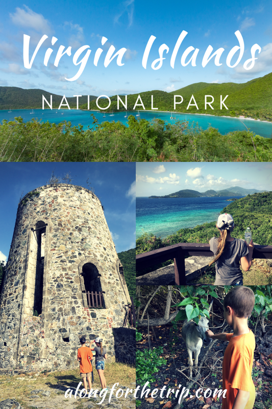 Virgin Islands National Park in St. John USVI is the turquoise jewel of the National Park Service and dazzles with it's beauty. If you're visiting the US Virgin Islands, put this park on your list! | National Parks #familytravel #nationalparks #USVI #VirginIslands