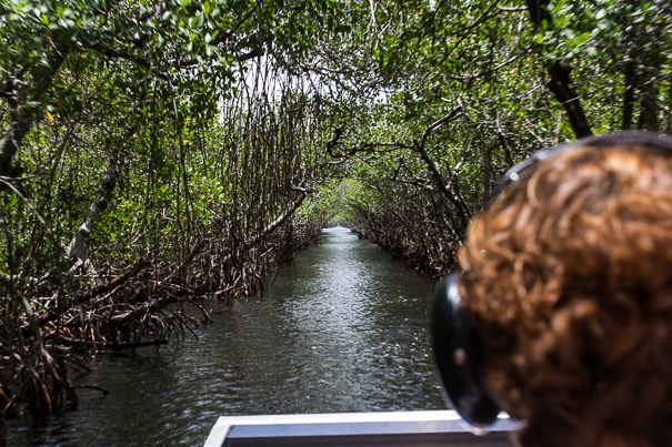 airboat tours - Everglades National Park with kids