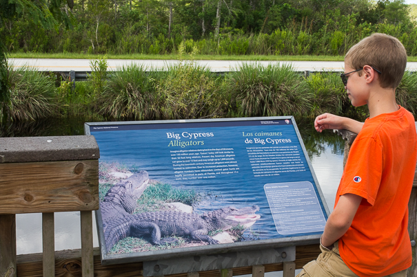Big Cypress Oasis Visitor Center with kids