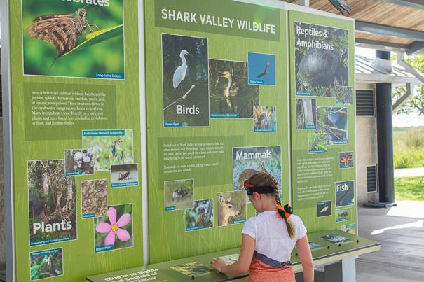 Everglades Shark Valley Visitor Center - Everglades National Park for kids