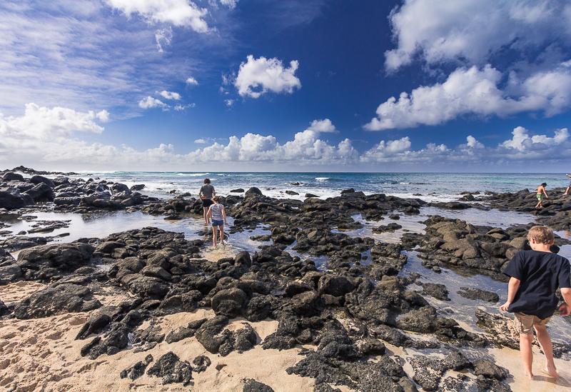 Point and shoot camera reviews - photos of Hawaii