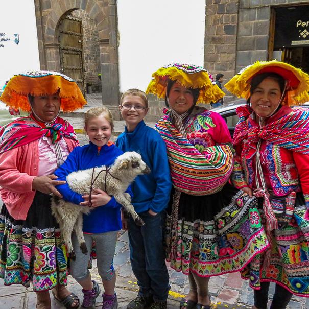 Baby goats in Cusco Peru