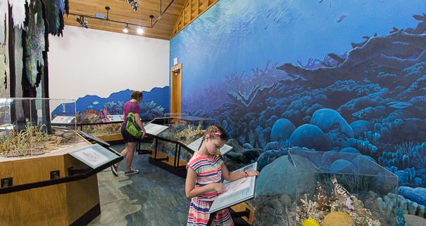 Exploring Dante Fiscell Visitor Center at Biscayne National Park