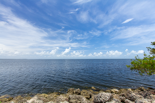 Shores of Biscayne National Park