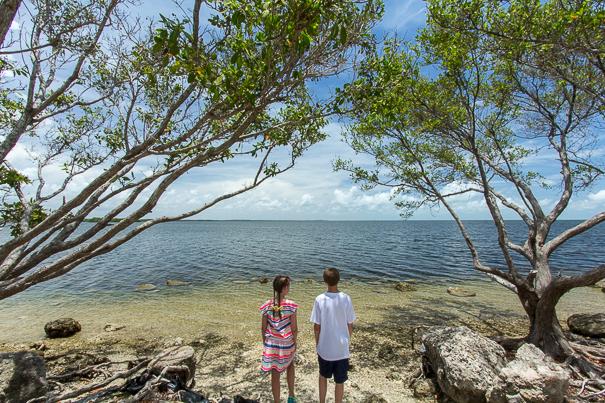 Overlooking Biscayne Bay in Biscayne National Park Florida