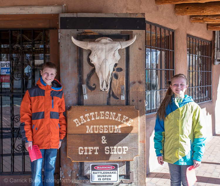 Rattlesnake Museum - Things for kids to do in Albuquerque