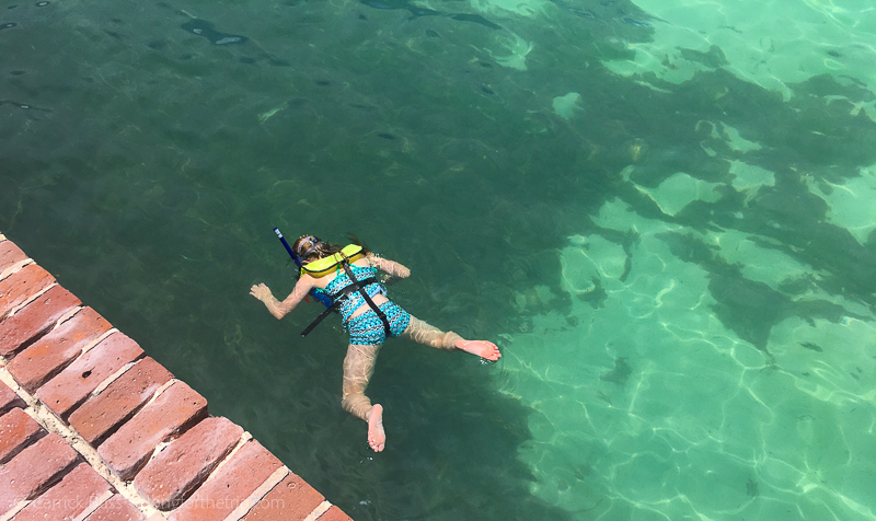 Snorkeling at Dry Tortugas along the moat wall