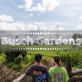 Family Travel Busch Gardens with kids