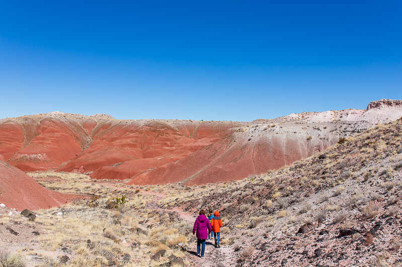 Hiking in Petrified Forest National Park