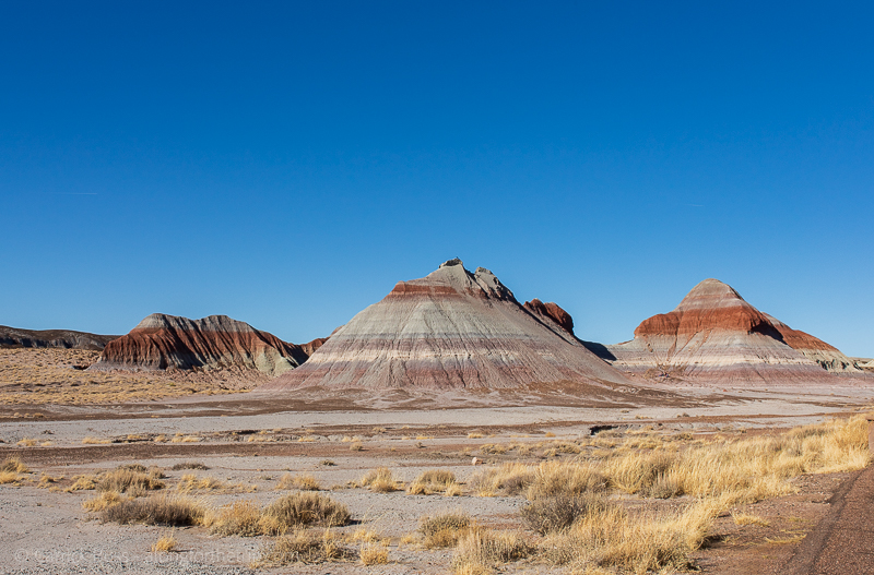 Petrified Forest National Park Tepees