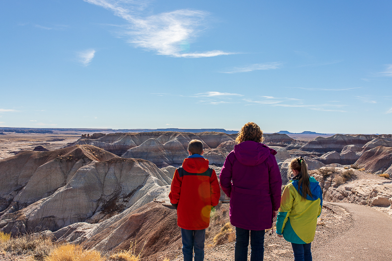 Petrified Forest National Park with kids