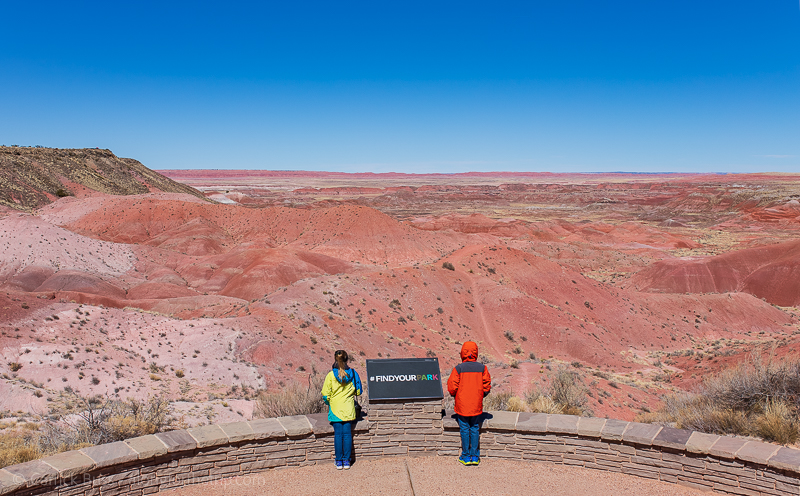 Petrified Forest National Park and Painted Desert