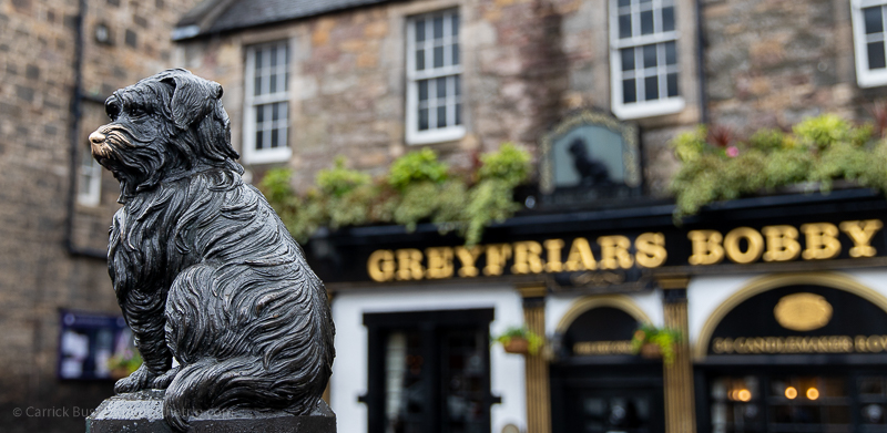 Things to do in Edinburgh - Greyfriars Bobby