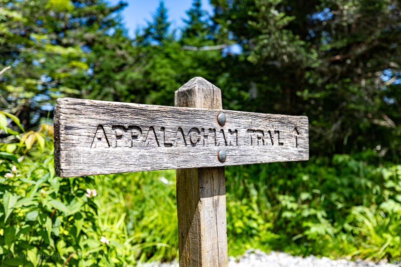 Appalachian Trail - things to do near Great Smoky Mountains National Park