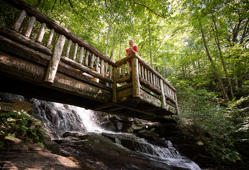 waterfalls in Great Smoky Mountains National Park - Juney Whank Falls