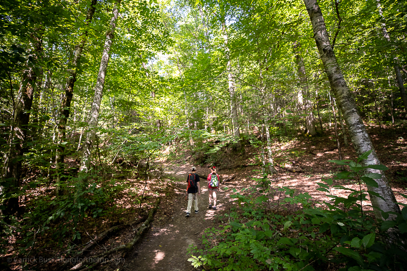 Great Smoky Mountains National Park hiking