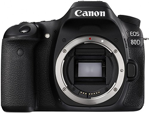 Canon EOS 80D - best canon camera for travel