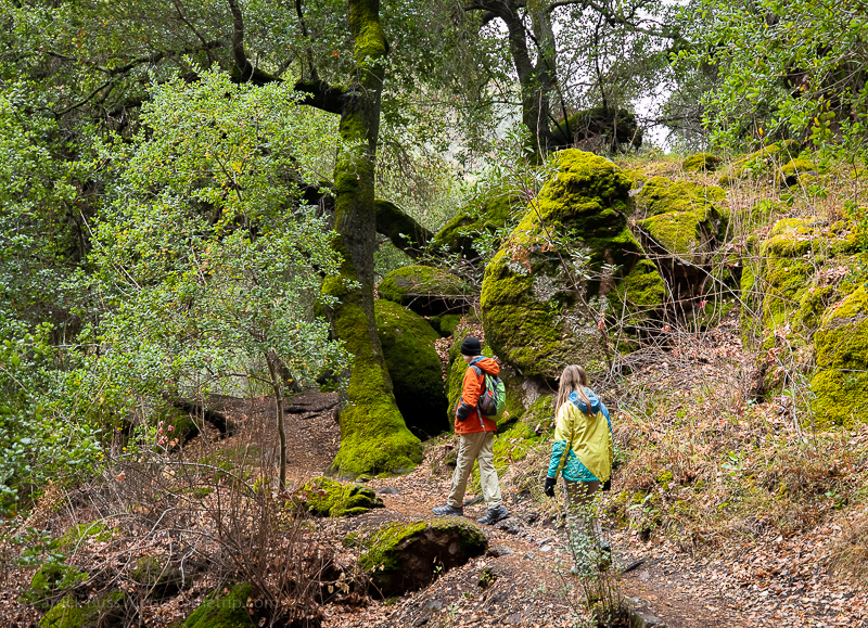 Pinnacles National Park hikes with kids