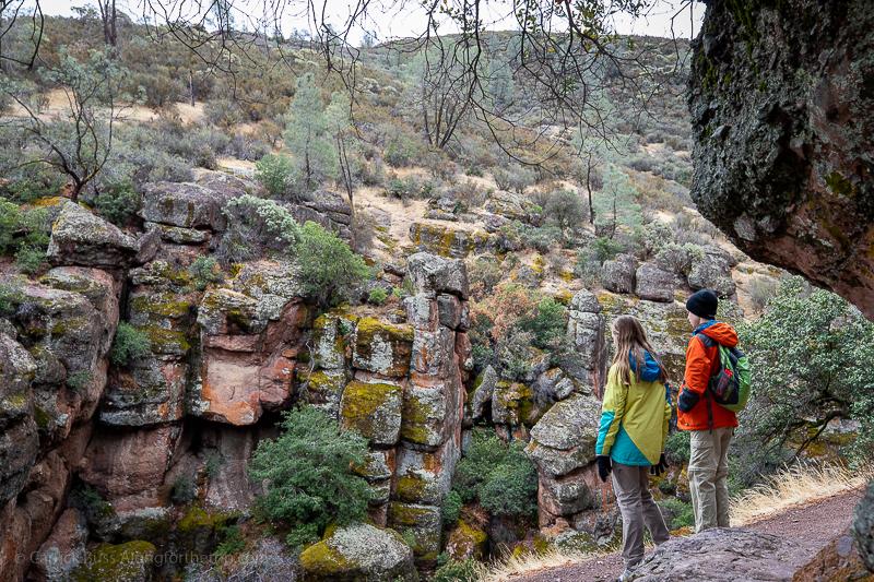 Overlooking Bear Gulch in Pinnacles National Park