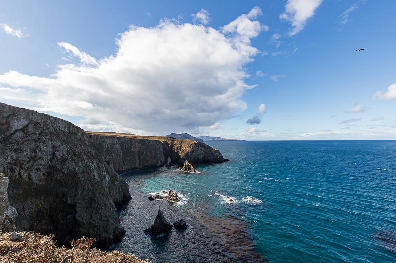 Channel Islands Visit