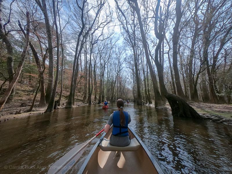 Congaree National Park kayaking