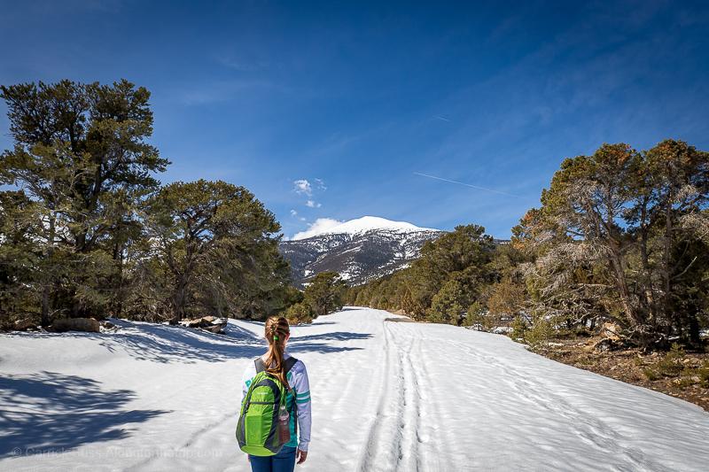 Great Basin National Park Winter