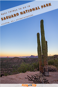 Thinigs to do in Saguaro National Park